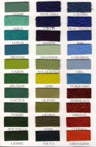 Carte couleur cuir n° 1