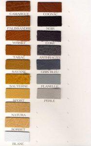 carte couleur cuir 03